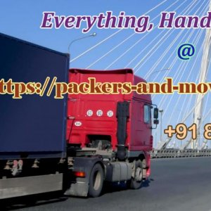 packers and movers delhi local